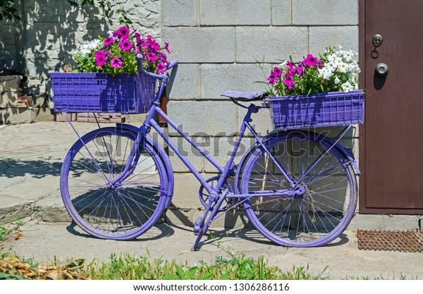 violet-vintage-bicycle-colourful-flowers