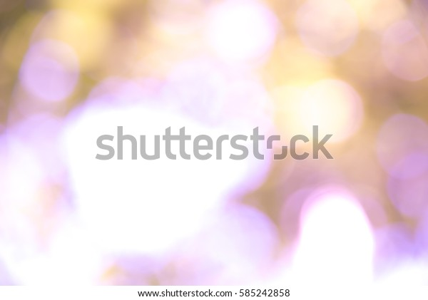 Violet and white bokeh from natural