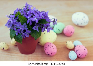 Violets in a clay pot with colorful Easter eggs