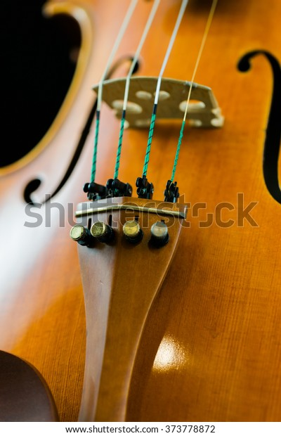 Violin Bridge Fine Tuners Stock Photo (Edit Now) 373778872