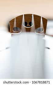 Violin bridge with strings details. vertical orientation