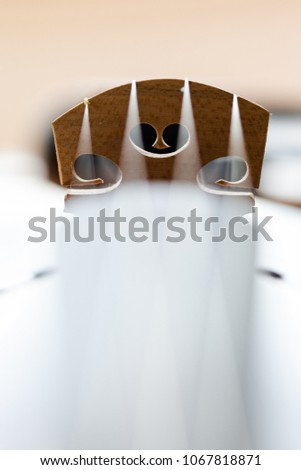 Violin bridge with strings details. vertical orientation