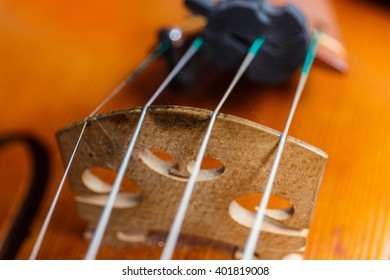Violin Strings Tuners Images, Stock Photos & Vectors