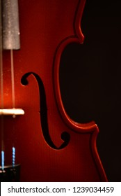 Violin detail in nice light.