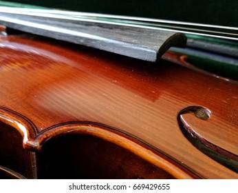 violin in green velvet lined hard case