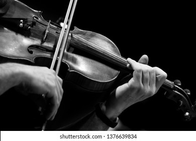 Violin in the hands of a musician close-up in black and white