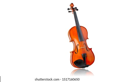 Violin isolate on white background.Body violin.Picture have white space for text. Shadow is mirror reflection.