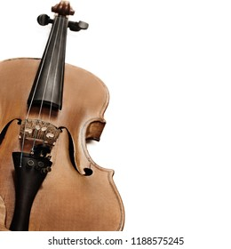 Violin isolated on white background. Orchestra music instrument closeup