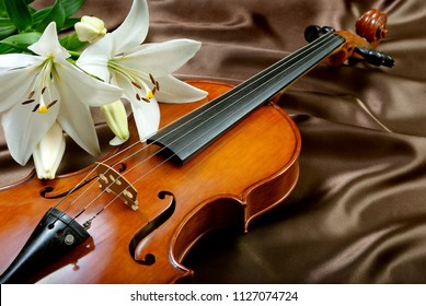 violin and lily on a silk background
