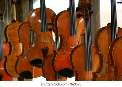 violin maker's studio