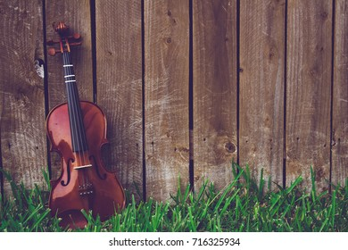 Violin on green grass lying against a fence background