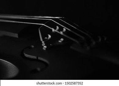 Violin orchestra musical instruments isolated on black silhouette. Music background with violin