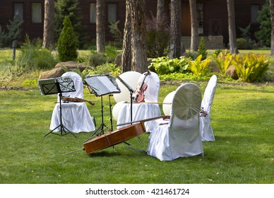 Violin. Violin outdoors. Live music. Wedding.Musician for the wedding.Violin under the open sky
