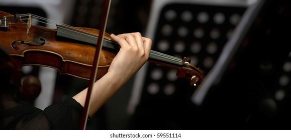 violin and performer