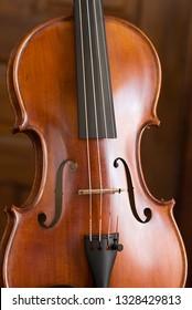Violin Portrait Close Up