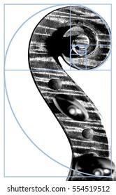 Violin Scroll and the Fibonacci Spiral