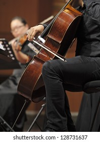 violoncellist perform on wind music chamber music concert