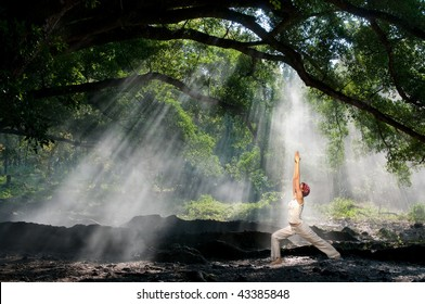 virabhadrasana, hatha yoga in the morning with sun ray through the tree branches