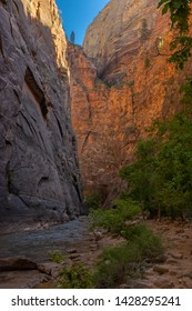 The Virgin River weaves through the spectacular and stunning Narrows Canyon,  Zion National Park, USA, nobody in the image