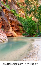Virgin River in Zion national parc, Utah, Southwest, USA