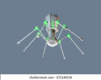 Virus bacteriophage model
