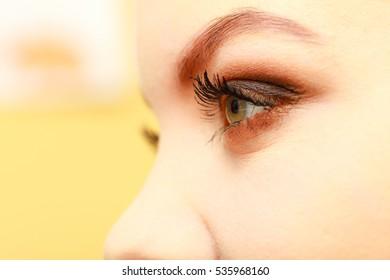 Visage concept. Woman with full eyes make up. Eyeshadow, brows, eyelashes