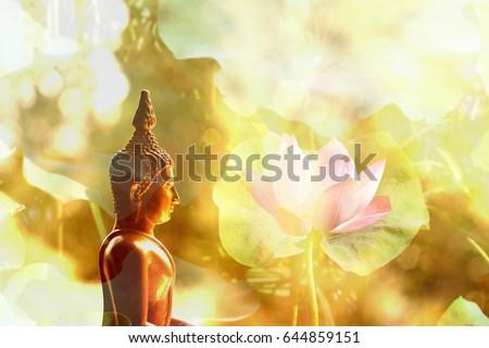Visakha Puja Day Buddha Statue Lotus Stock Photo Edit Now