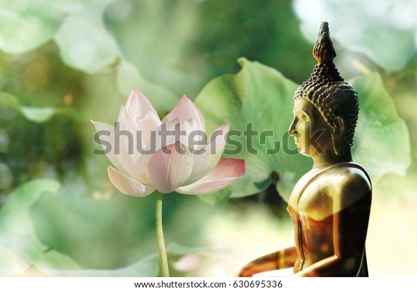 Visakha Puja Day Buddha Statue Lotus Stock Photo Edit Now 630695336