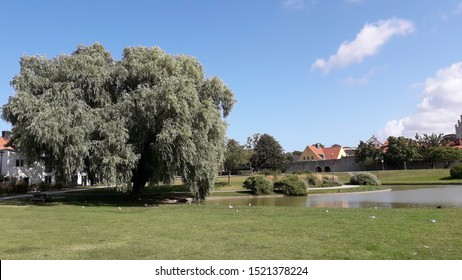 Visby, Gotland, Sweden 08/20 2019 Almedalen a park near the harbor where a political festival is hold every year week 27. Started by Olof Palme. Speech and events are hold and different partys meet.