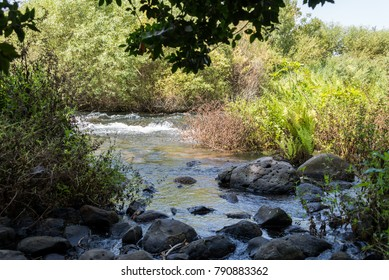 Visiting Tel Dan Nature Reserve in Northern Israel