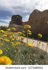 Visiting the Tumacacori National Historic Monument is like walking through time. During the spring wildflowers dot the landscape adding to its beauty.