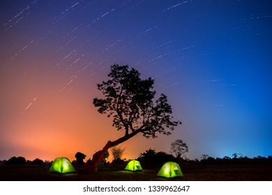 Visitor spread tent under the big tree. Star and star trails.Small Camping Tent Illuminated Inside. Recreation and Outdoor Photo Collection.Photo by select white balance and focus.