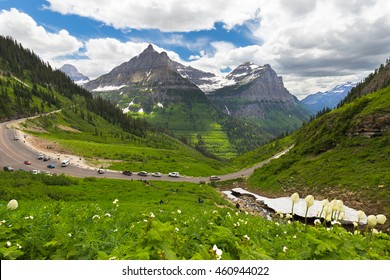 Visitors at Going to the sun road, Glacier National Park. Montana
