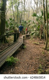 Visitors to the Highlands Hammock Park walk along a wooden walkway, Florida State Parks, USA