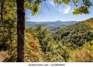 Vistas along the Laurel Falls Hike at Great Smoky Mountains National Park