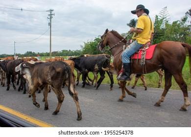 vistas de los llanos orientales en colombia