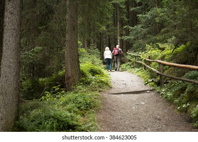 vital senior couple hiking on up hill track in the forest in austrian alps