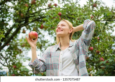 vitamin and dieting food. healthy teeth. hunger. orchard, gardener girl in apple garden. Happy woman eating apple. spring harvest. summer fruit. strong teeth. useful apple. i love apples. fresh apple.