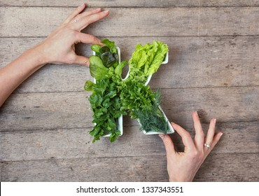 Vitamin K in food concept. Woman's hands holding plate in the shape of the letter K with different fresh leafy green vegetables, herbs,  lettuce on wooden background. Flat lay or top view.