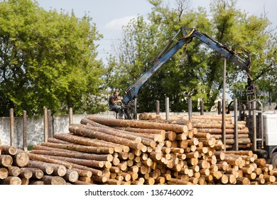 Vitebsk, Belarus - AUGUST 14, 2017: log yard (wood storage place) and logger