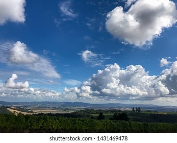 Vivid blue sky filled with big dramatic white clouds, bold color and a bit of horizon.
