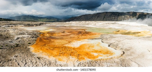 Vivid Canary Spring area at thermal terraces rock formations in Mammoth Hot Springs, Yellowstone National Park. USA. Panoramic photo