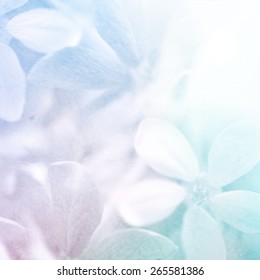 vivid color flowers in soft and blur style on mulberry paper texture