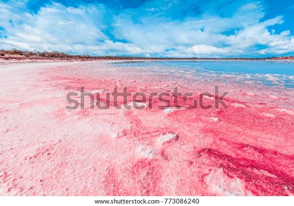 Vivid red Salt deposits on shores of beautiful pink lake