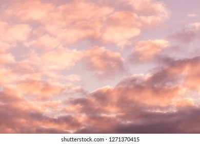The vivid sky or heaven background of blue, red, crimson and purple clouds of evening sunset or morning daybreak