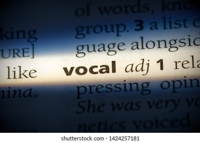 vocal word in a dictionary. vocal concept, definition.