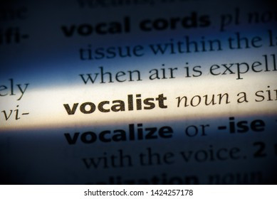 vocalist word in a dictionary. vocalist concept, definition.