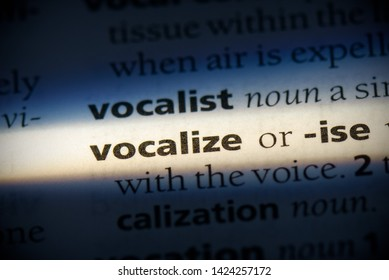 vocalize word in a dictionary. vocalize concept, definition.