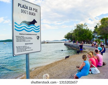 Vodice, Croatia - July 9, 2018: Owners with dogs on the specially equipped beach for dogs.