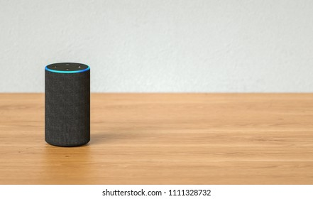 voice controlled smart speaker including copy space